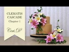 ▶ Clematis Cascade #1 | Introduction - YouTube