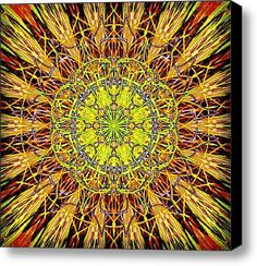 Morning Mandala  Stretched Canvas Print / Canvas Art by Vicki Field