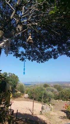 Angoli di paradiso  Portobello  Sardegna