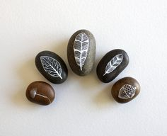 Painted Stone Collection - Feathers, Leaf, Acorn & Spore Stone Set