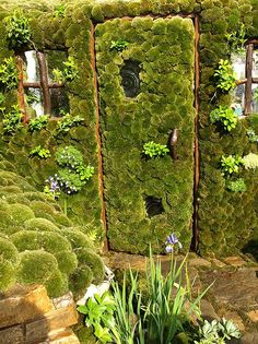 photo of green garden door - Yahoo Search Results