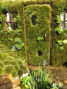 photo of green garden door