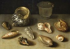 Exotic Glass art   Jacques Linard Exotic Shells on a Table with a... - still life quick ...