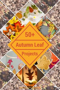 50+ Autumn Leaf Proj