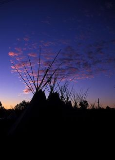 Teepees in Crow Fair in Montana. Photo by Valonia Hardy.