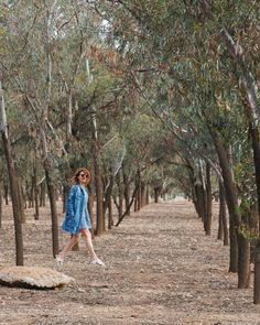 """Travellers • Olga + GreG on Instagram: """"Little walk in Marrakech surroundings 🚶🏽♀️to enjoy the beauty of the landscape. #marrakesh #morocco #tree #travelblogger #travel #traveler…"""""""