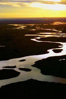 Pantanal - Mato Grosso do Sul/Brazil