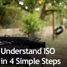 Understand ISO in 4 Simple Steps » Expert Photography