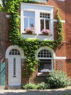 Uw geveltuin verwent u op vele manieren | Stad Gent