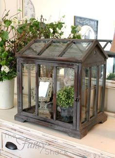 think I'll paint mine this color Much better than the white The Fancy Shack is part of Lanterns decor - Large Terrarium, Terrarium Diy, Glass Terrarium, Homemade Greenhouse, Mini Greenhouse, Simple Greenhouse, Window Greenhouse, Indoor Garden, Indoor Plants
