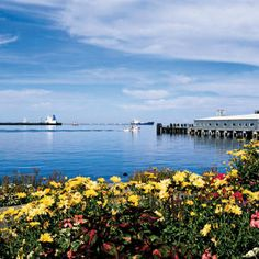 Port Angeles could become that next great coastal town smack between the gleaming Strait of Juan de Fuca and the magnificent mountains of Olympic National Park Best Places To Live, Places To See, Port Angeles Washington, Jacques Yves Cousteau, Olympic Mountains, Evergreen State, Pismo Beach, Beach Town, Pacific Northwest