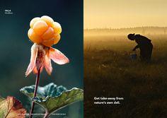 Natures own deli