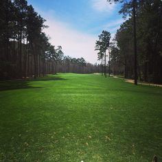 The Witch, Off Hwy 544 in Conway, SC and minutes from Myrtle Beach. Natural beauty and clever design come together on this 500-acre landscape fittingly named The Witch Golf Club.  http://www.visitmyrtlebeach.com/golf/   (Photo via Instagram By @dontmissdahbear)