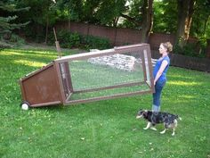 Mobile chicken coop.  Great idea!  And wire bottom keeps them safe still, but…