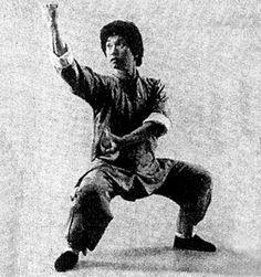 Doc Fai Wong - Choy lee fut