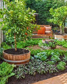 Grow a garden for all seasons