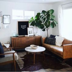 The fiddle leaf, the letterboard, the pillows... this room is  : @hunterkfowler