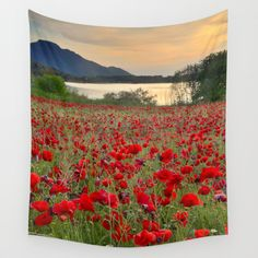 Field of poppies in the lake Wall Tapestry