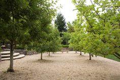Denler Hobart Gardens - Classic Gardens in California: Atherton, Woodside, Portola Valley, Palo Alto, Ross, Belvedere, Kentfield, San Anselmo