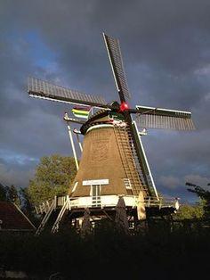 Terschelling Holland
