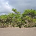 Lahaina beach made the top 10 beach destinations in the US