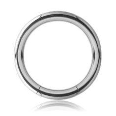 Stainless Steel Segment Ring | Tulsa Body Jewelry