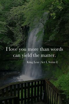 I love you more than words can yield the matter. King Lear