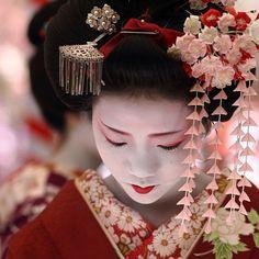 舞妓 梅らくさん The maiko (geisha apprentice) Umeraku. Together with other maiko and geiko (geisha) she was hosting an open air tea ceremony at Kitano Tenmangu Shrine in Kyoto. Japanese Beauty, Asian Beauty, Geisha Samurai, Beautiful World, Beautiful People, Simply Beautiful, Memoirs Of A Geisha, Art Japonais, Hair Ornaments