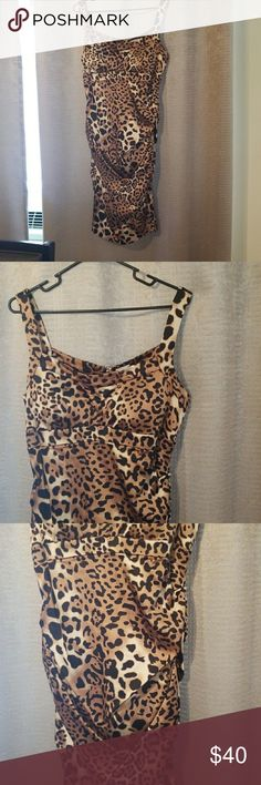 Cache' Leopard dress Leopard dress...rousching the entire length of the dress really gives it that extra touch...conservative yet sexy!! Cache Dresses