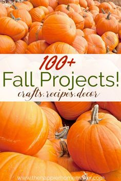 100  Fall Projects- tons of fall crafts, recipes, and decor projects and of course lots of pumpkin and apple ideas!