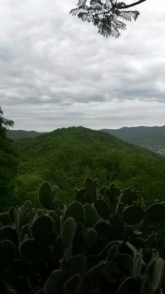 Cerro San Bernardo. Salta, la linda.
