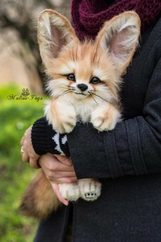 The only kind of fox I could ever have... Cute Creatures, Magical Creatures, Fantasy Creatures, Cute Baby Animals, Funny Animals, Felt Animals, Animals And Pets, Cute Art, Fox Toys