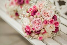 Rosa,Pink