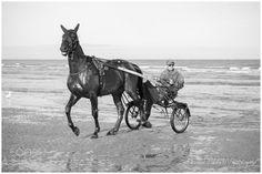 Une belle équipe - Au bord de l'eau, Plage de Deauville, Normandie - FR