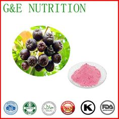 lower price high quality natural Aronia berries extract 800g