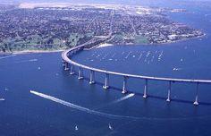 San Diego courtsalmon