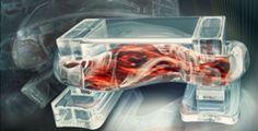 Robot, attenti a quegli otto: ci cambieranno la vita - NextMe