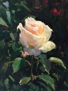 """Thank you judge Mary R. Pettis for choosing """"Aglow"""" (oil on linen, 9""""x12"""") as a February Finalist for The Gateway International Painting Competition. Judge's comment: """"In this little picture we feel the artist's reverence for the compelling beauty of a white rose in light. I'm not certain how anyone could see this painting and ever look at a rose in the same way again. I believe that this is our job as artists: to reflect back to all the inherent beauty in the abundance of life around us!"""""""