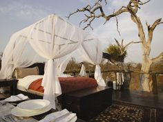 Lion Sands River Lodge, Kruger. One of the biggest thrills in Kruger is to spend a night under the stars at Lion Sands' tree house - a rare & unique experience! #Africa #SouthAfrica #safari