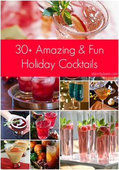 30+ Amazing and Fun Holiday Cocktails - A great collection of gorgeous holiday cocktails!  Pin this now - you'll want it for your next party!