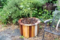 Stylish and Low Cost 55 Gallon Drum Planters : Mulch and your done Plastic Barrel Planter, Tire Planters, Garden Planters, Rustic Planters, Flower Planters, Cool Wood Projects, Garden Projects, Simple Projects, Log Projects