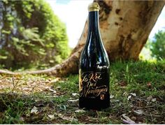 The king of the mountains, le Roi des Montagnes in his natural habitat! Wanna join him but you are stuck in the city? No worries, with a sip of wine you can travel everywhere, trust us 😉  Photo credits to @no.spilled.wine 👉Check link in bio for more 👈  #botiliagr #wine #winelover #leroidesmontagnes #theking #papargyriouwinery #cabernetsauvignon #agiorgitiko #touriganacional #drinkgreekwine #lateharvest #collectorsitem #repost #mondaymood #escape #daydreaming Cabernet Sauvignon, Daydream, Photo Credit, Habitats, Harvest, Trust, Join, Mountains, Canning