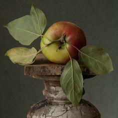 Janet Jones, Forbidden Fruit, Ivy House, Art Of Living, Still Life, Nature, Food, Archive, Facebook