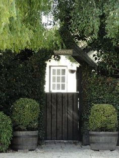 Black gate, stunning with charcoal matte barrel planters. Requires the contrast of different shades of green plants.