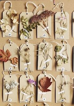 NATURE TAGS - Gardens Illustrated has joined together with The Herbarium Project to show you how to make your own floral Advent calendar for Christmas.