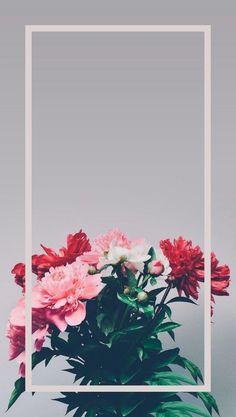 Wallpaper cellmobile wallpaperBeautiful background for mobile. Tumblr Wallpaper, Flower Wallpaper, Nature Wallpaper, Cool Wallpaper, Camera Wallpaper, Cute Wallpaper Backgrounds, Flower Backgrounds, Aesthetic Iphone Wallpaper, Cute Wallpapers