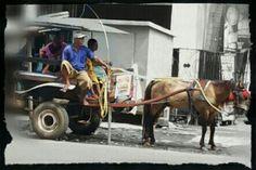 Andong,  Tradisional Indonesia