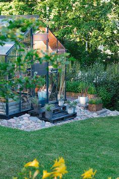 Houseplants, Outdoors, Gardening, Patio, Outdoor Decor, Flowers, Blog, Gardens, Indoor House Plants