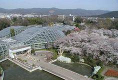 AAS Display Garden Kyoto Botanical Gardens In Kyoto, Japan