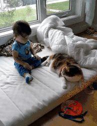 I'll be your cushion tiny human !